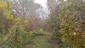 Земельный участок Гнедин, E-37902 - Фото 10