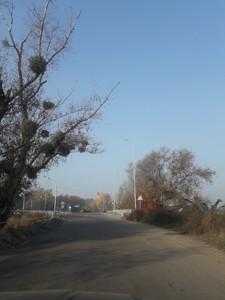 Земельный участок M-34114, Романков - Фото 5