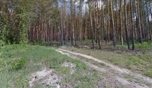 Земельна ділянка Тарасівка (Обухівський), M-34123 - Фото3