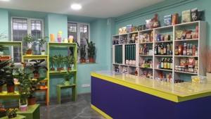 Нежилое помещение, Емельяновича-Павленко Михаила (Суворова), Киев, F-40728 - Фото3