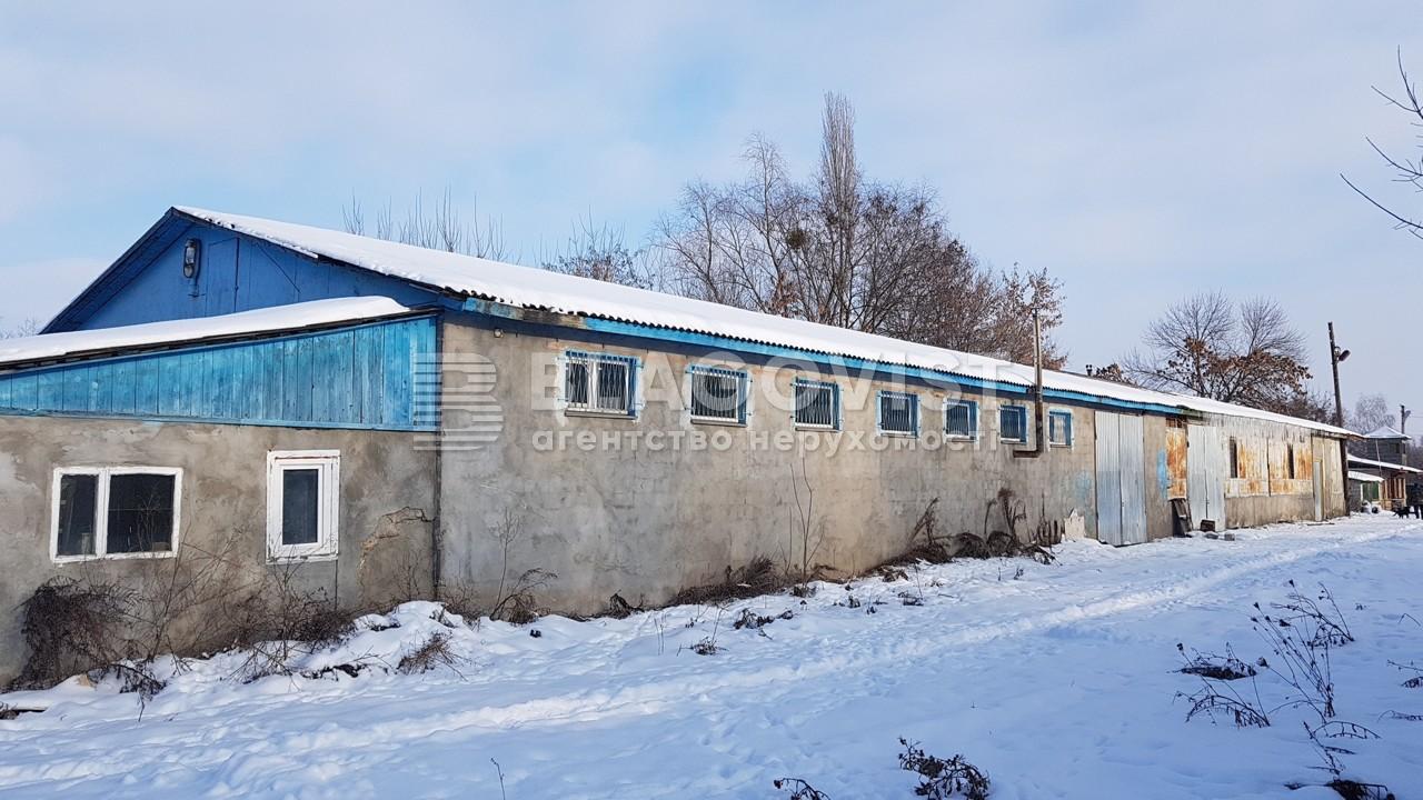 Имущественный комплекс, K-115, Немешаево (Бородянский) - Фото 2