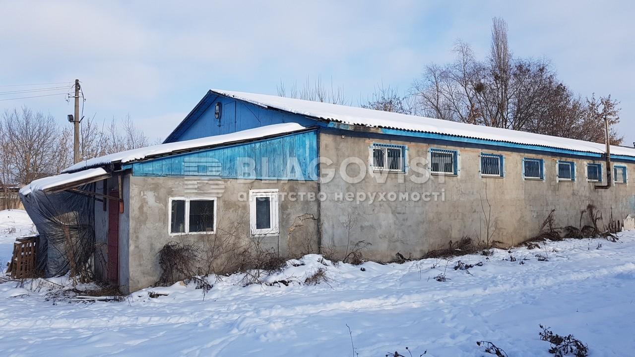 Имущественный комплекс, K-115, Немешаево (Бородянский) - Фото 1