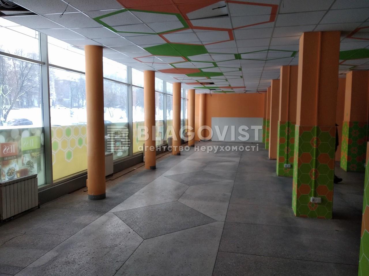 Магазин, R-21330, Голосеевский проспект (40-летия Октября просп.), Киев - Фото 5