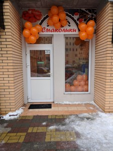 Магазин, Клавдиевская, Киев, X-33660 - Фото3