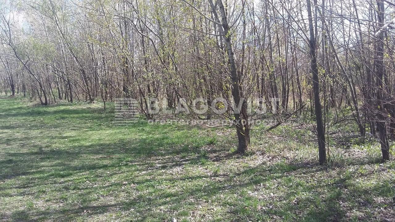 Земельный участок H-43528, Великая Бугаевка (Васильковский) - Фото 1