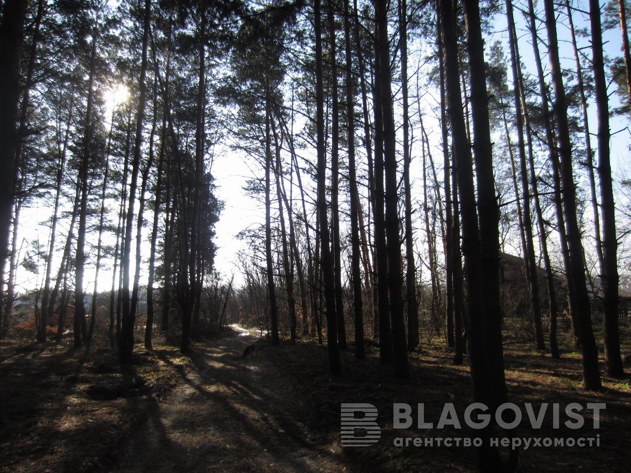 Будинок R-22282, Застугна (Васильківський) - Фото 12