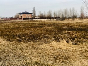 Земельный участок Глебовка, R-24978 - Фото2