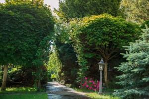 Будинок Козин (Конча-Заспа), R-25460 - Фото 10