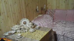 Дом Садовая (Осокорки), Киев, R-11916 - Фото