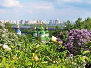 Квартира Бастіонний пров., 5, Київ, A-45657 - Фото 5