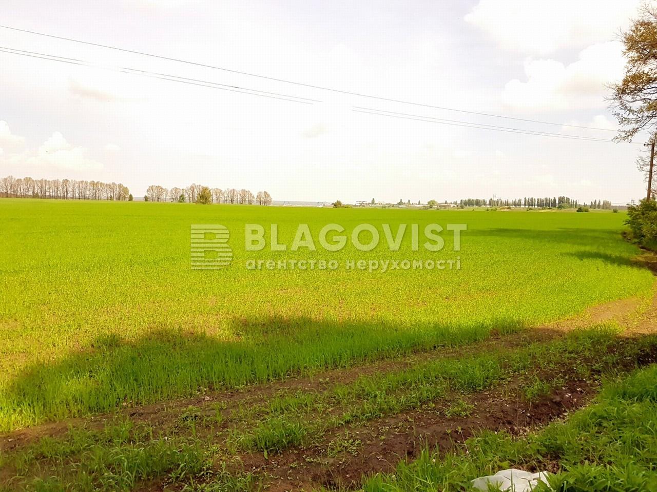 Земельный участок P-25719, Малышко, Обухов - Фото 1