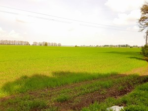 Land Malyshka, Obukhiv, P-25719 - Photo