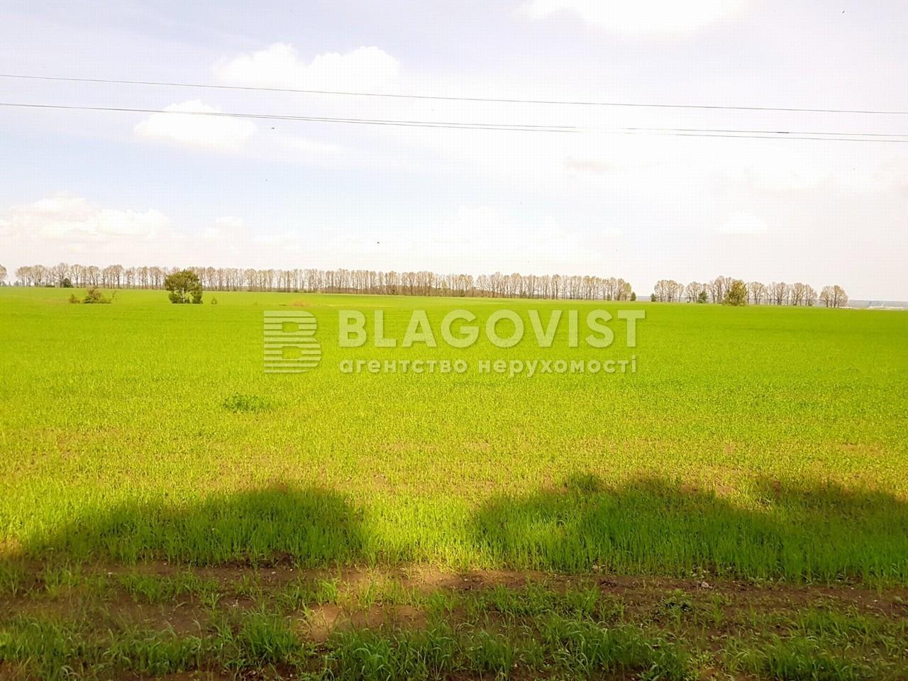 Земельный участок P-25719, Малышко, Обухов - Фото 2