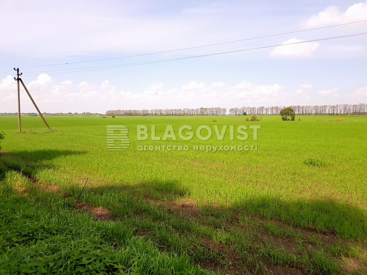 Земельный участок P-25719, Малышко, Обухов - Фото 3