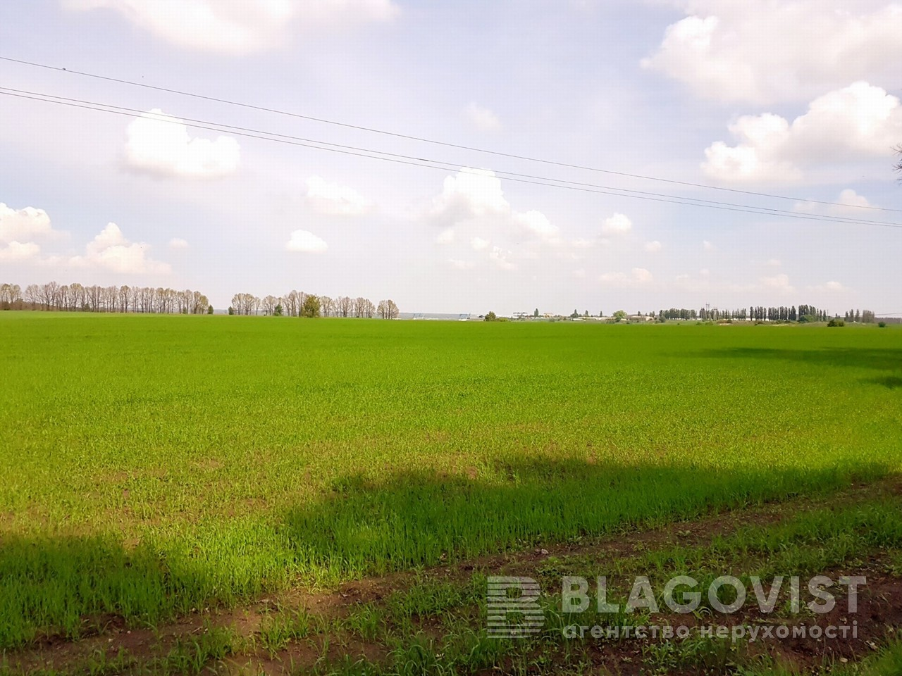 Земельный участок P-25719, Малышко, Обухов - Фото 4