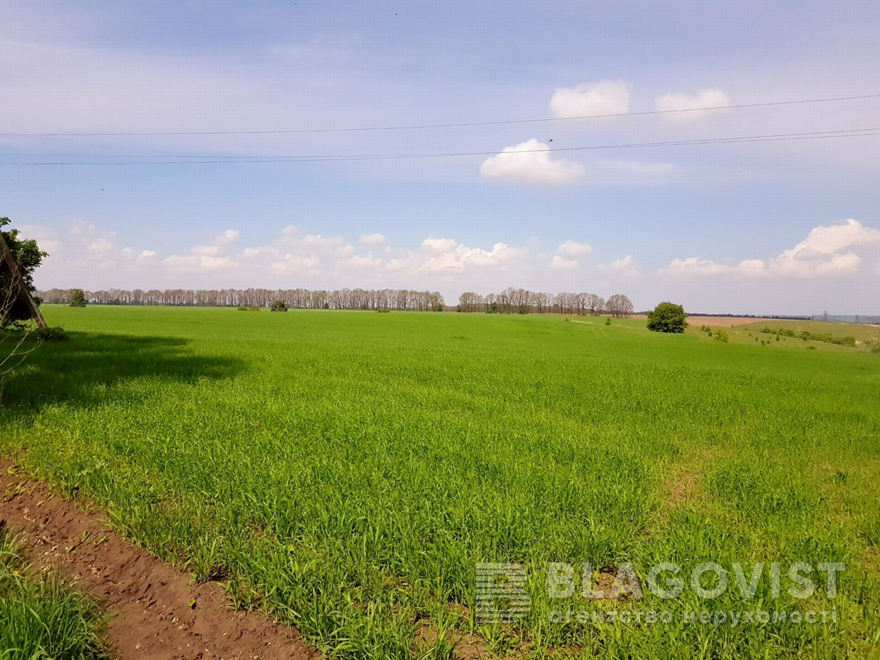 Земельный участок P-25719, Малышко, Обухов - Фото 6
