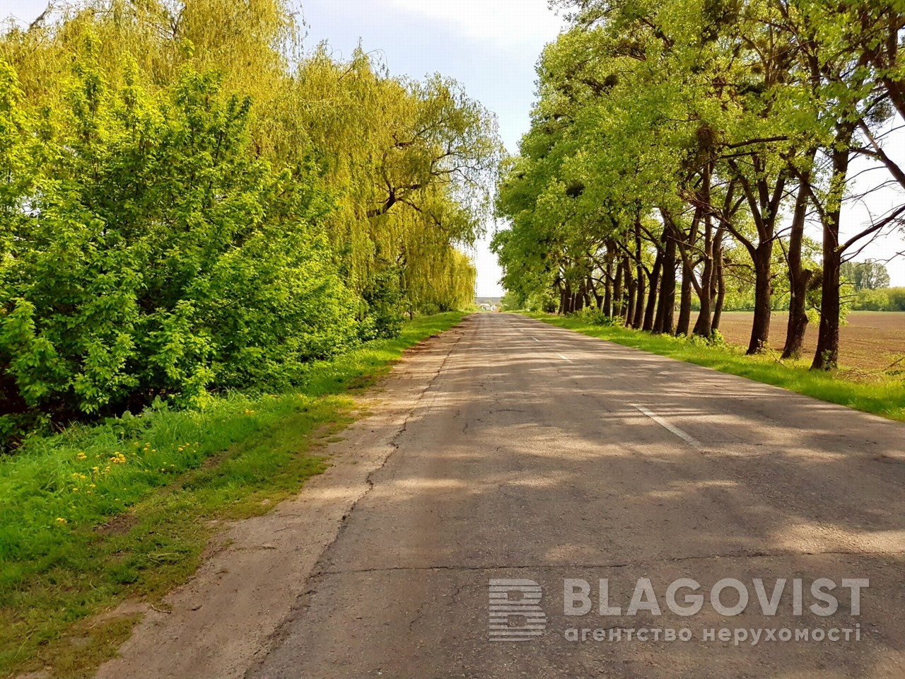 Земельный участок P-25719, Малышко, Обухов - Фото 8