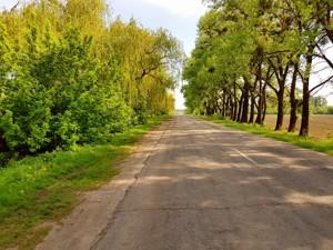 Земельна ділянка Малишка, Обухів, P-25719 - Фото 8