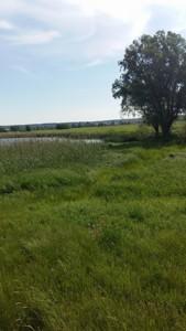Земельный участок Гнедин, C-106474 - Фото