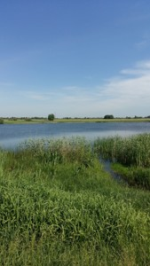 Земельна ділянка Гнідин, C-106474 - Фото 9