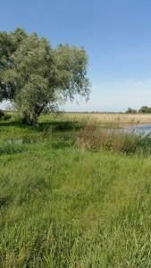 Земельный участок Гнедин, C-106475 - Фото 5