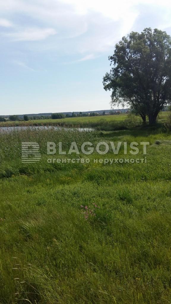 Земельный участок C-106476, Гнедин - Фото 3