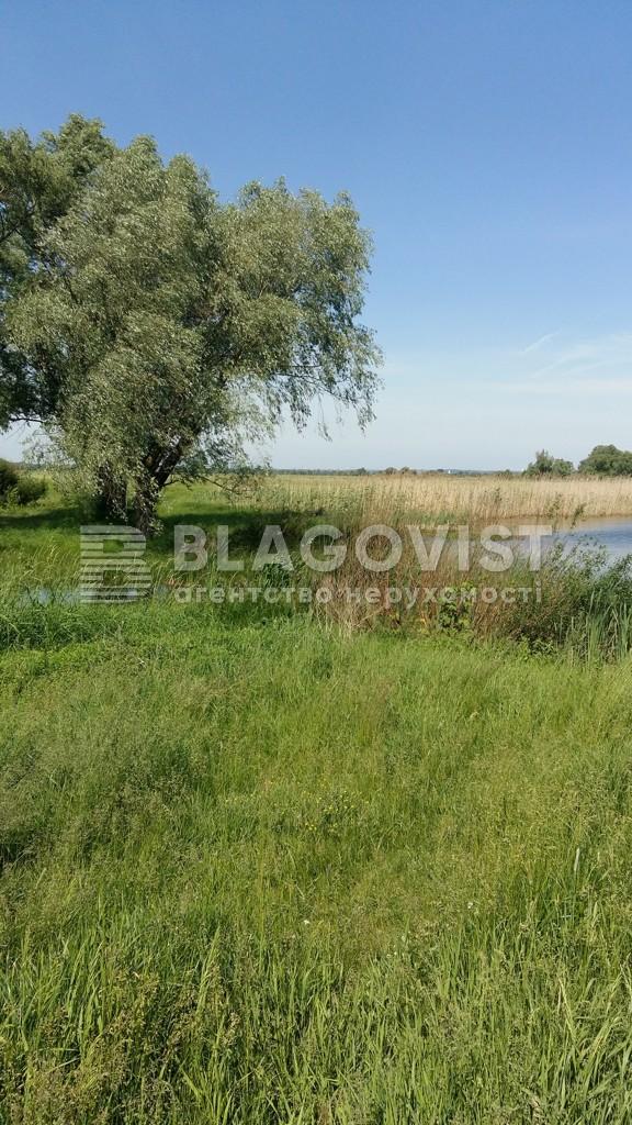 Земельный участок C-106476, Гнедин - Фото 4