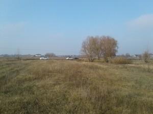 Земельный участок Береговая, Вишенки, A-110186 - Фото2