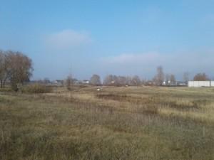 Земельный участок Береговая, Вишенки, A-110186 - Фото3