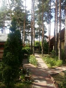 Ресторан, Боровкова, Подгорцы, Z-244163 - Фото 10