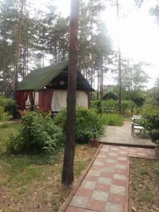 Ресторан, Боровкова, Подгорцы, Z-244163 - Фото 20