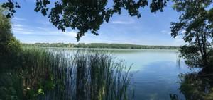 Земельный участок Заозерная, Бобрица (Киево-Святошинский), A-110313 - Фото