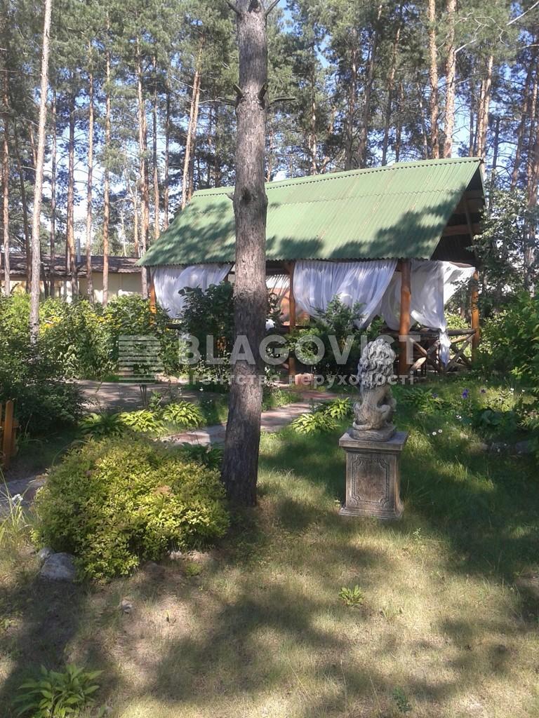 Ресторан, Z-244163, Боровкова, Подгорцы - Фото 17