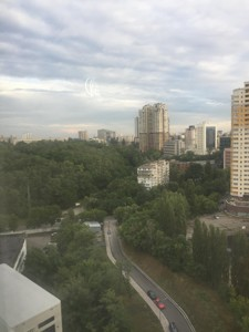 Квартира Липкивского Василия (Урицкого), 37б, Киев, F-41853 - Фото 19