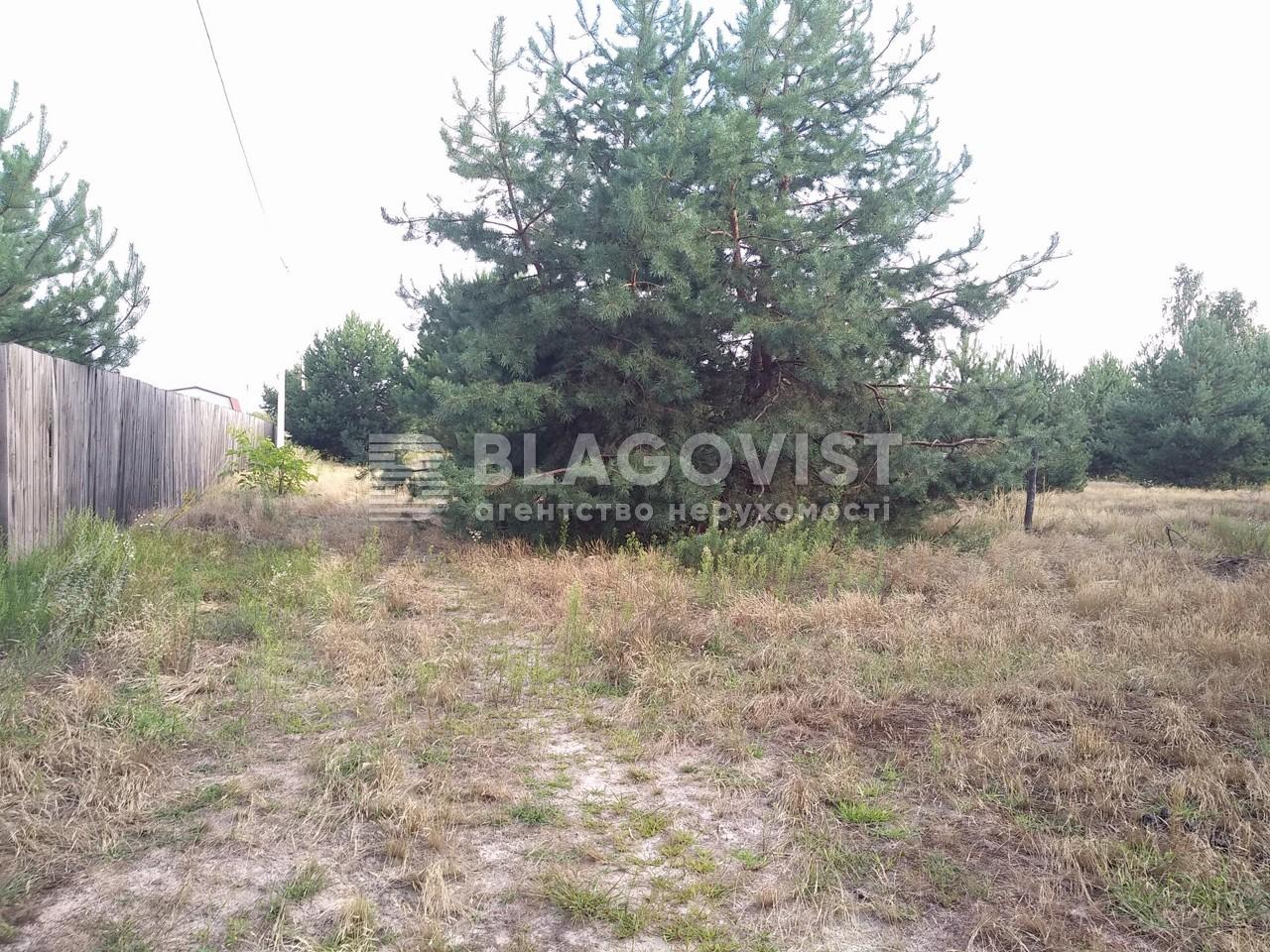 Земельный участок P-26260, Перевоз - Фото 14