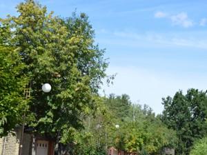 Дом Козин (Конча-Заспа), R-27889 - Фото 8