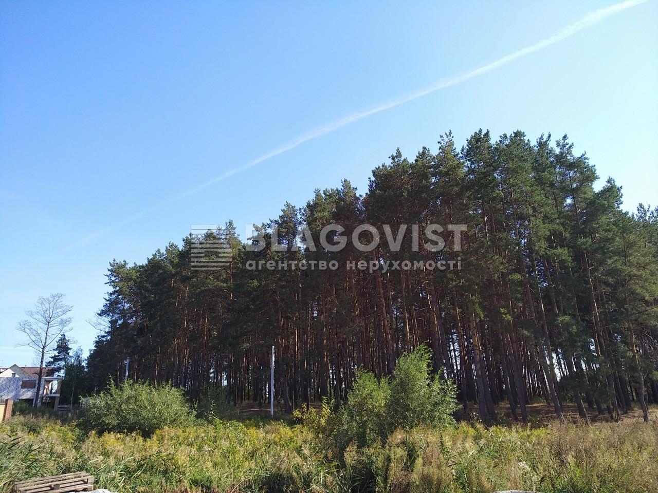 Дом P-26550, Школьный пер., Юровка (Киево-Святошинский) - Фото 54