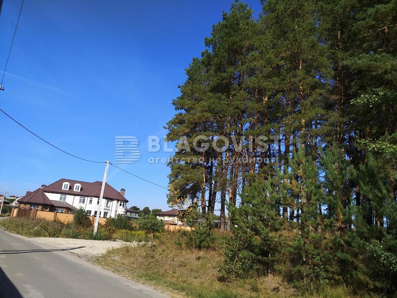Дом P-26550, Школьный пер., Юровка (Киево-Святошинский) - Фото 57