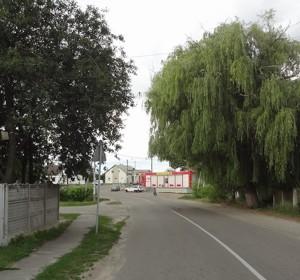 Дом Лубянка (Бородянский), Z-564547 - Фото 1