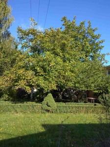 Дом Козин, H-45295 - Фото 42