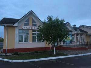 Нежитлове приміщення, Богданівка (Броварський), F-42321 - Фото 3