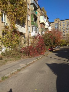 Квартира Озерна (Солом'янка), 12а, Київ, H-45333 - Фото