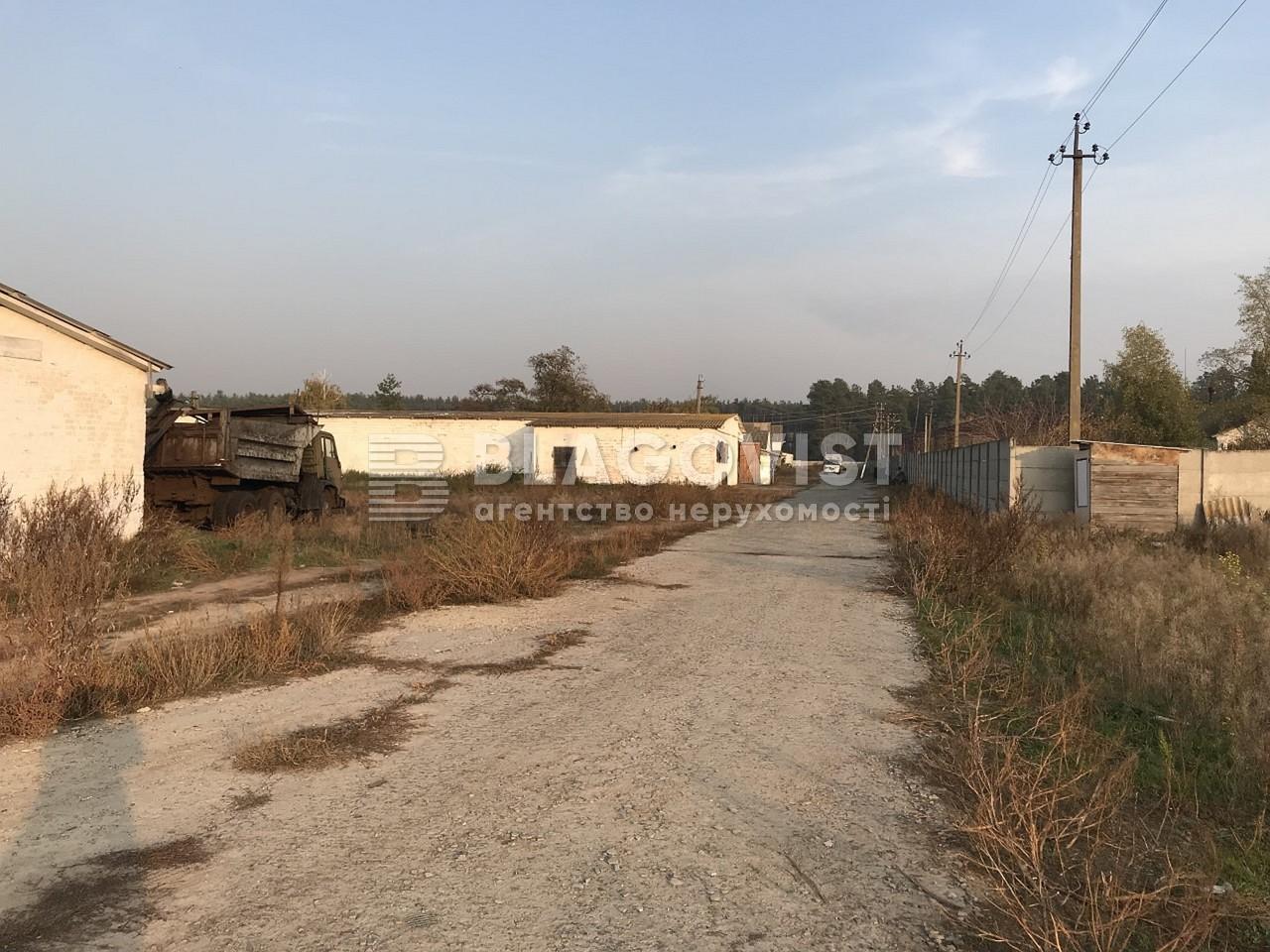Имущественный комплекс, M-36413, Ленина, Лебедевка (Вышгородский) - Фото 16