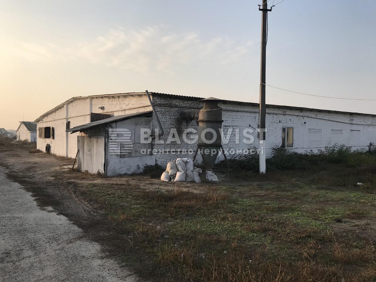 Имущественный комплекс, M-36413, Ленина, Лебедевка (Вышгородский) - Фото 8