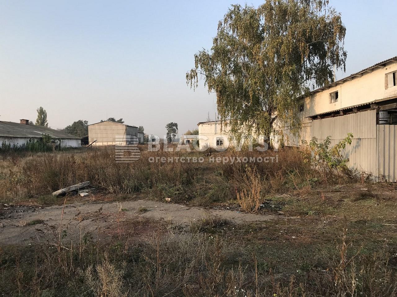 Имущественный комплекс, M-36413, Ленина, Лебедевка (Вышгородский) - Фото 18