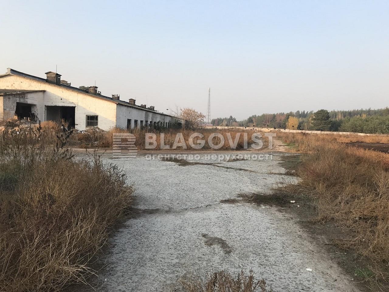 Имущественный комплекс, M-36413, Ленина, Лебедевка (Вышгородский) - Фото 6