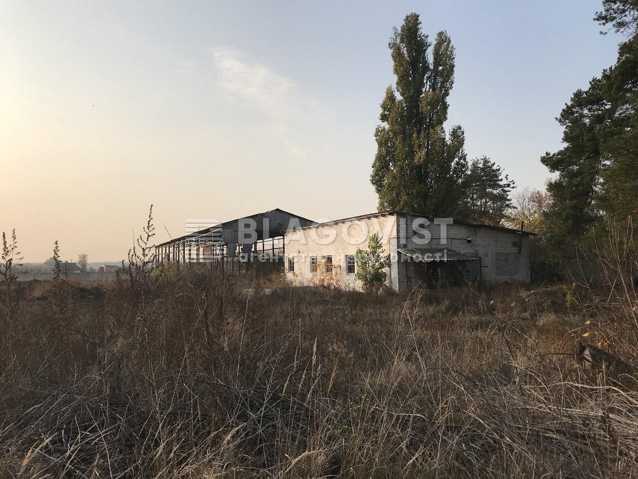 Имущественный комплекс, M-36413, Ленина, Лебедевка (Вышгородский) - Фото 17