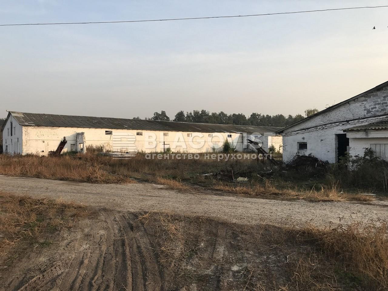 Имущественный комплекс, M-36413, Ленина, Лебедевка (Вышгородский) - Фото 5