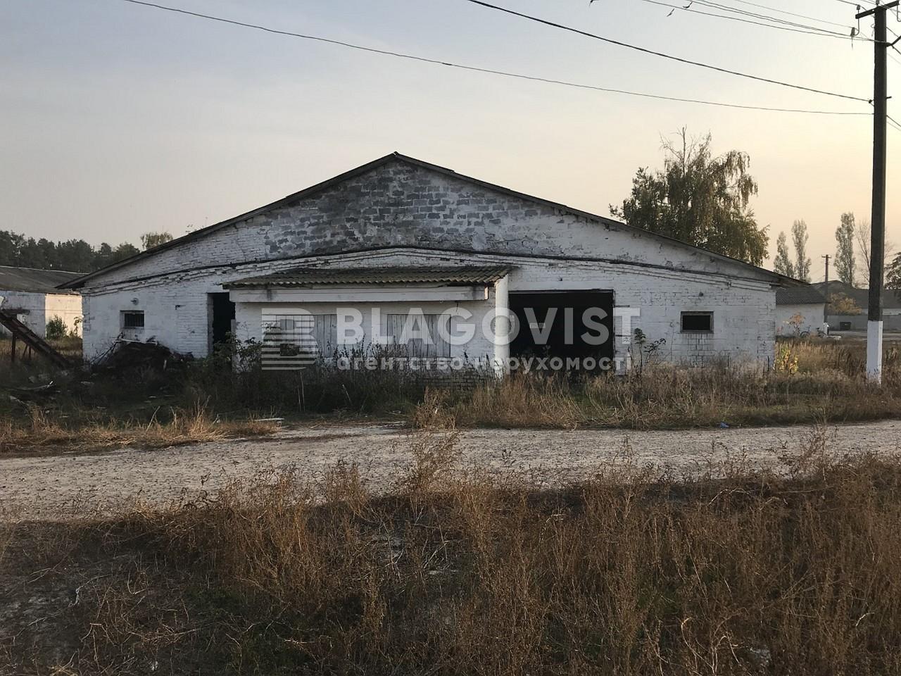 Имущественный комплекс, M-36413, Ленина, Лебедевка (Вышгородский) - Фото 4
