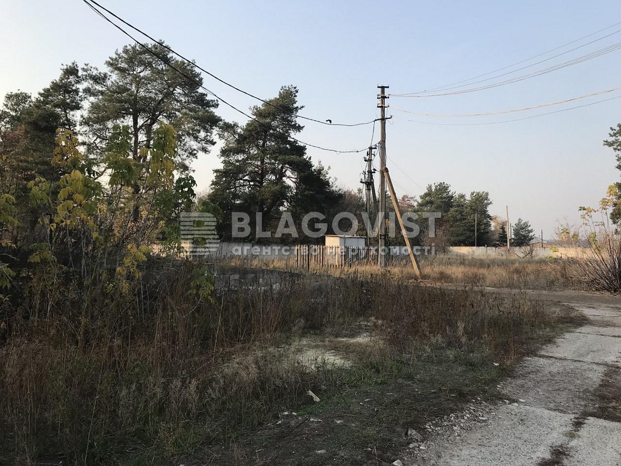 Имущественный комплекс, M-36413, Ленина, Лебедевка (Вышгородский) - Фото 20